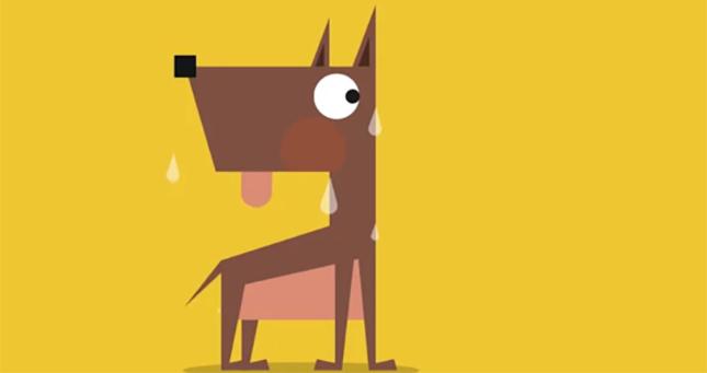 Ilustraciones Si mi perro hablara