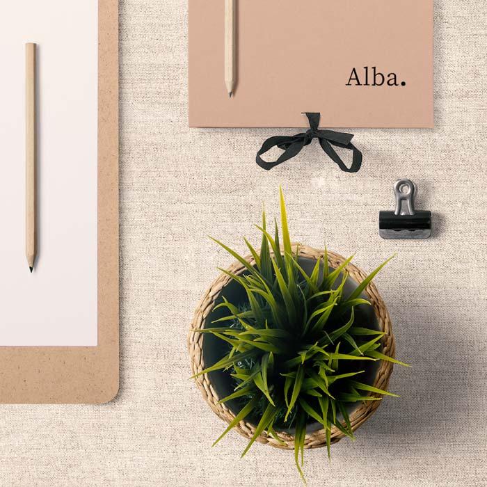 Portfolio-Alba