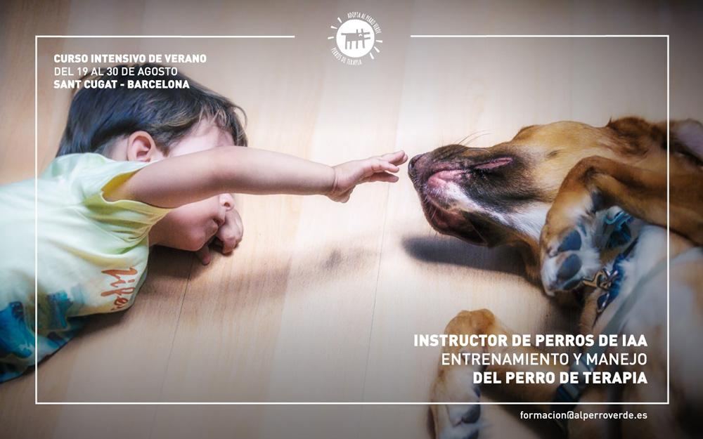 Instructor de perros de IAA