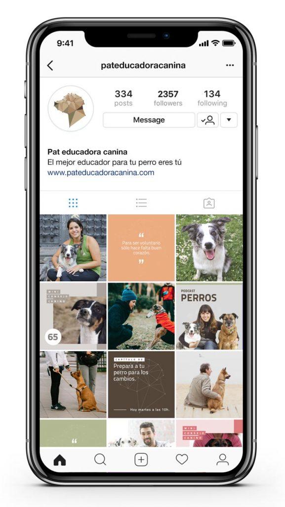 Instagram Pat educadora canina
